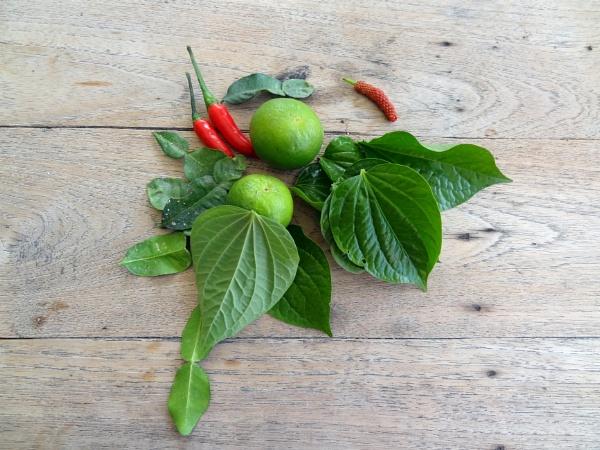 Fresh Flavour by alant1