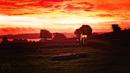 Autumn Dawn by Stevecarr2010