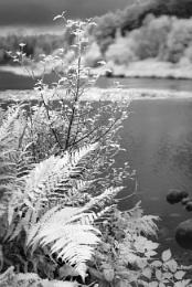 Loch Stroan - An Infrared Photo.
