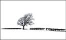 Hedgerow 2 by danbrann