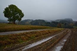 Autumn walk in V�prachtice