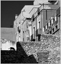Tarragona Tenaments