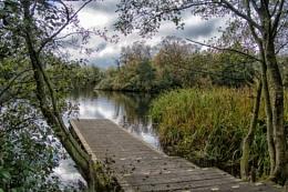 Bolam Lake, Northumberland 3