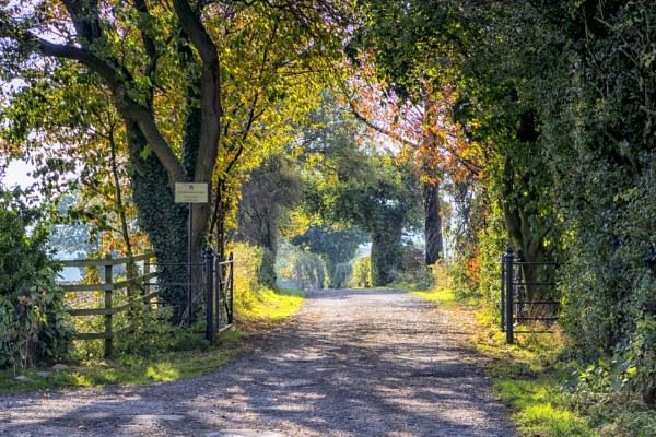Farm gate by Owdman