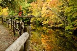 Bridge Across Autumn Stream