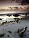 Distant Shore by SandraKay