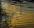 Ripples at Sunset by SUE118
