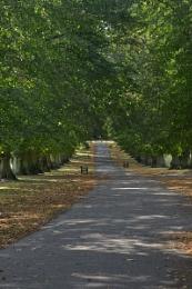 Rothampstead Park, Harpenden.