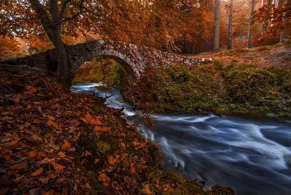 Foley\'s Bridge by brzydki_pijak