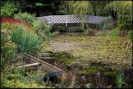 Gooderstone Water Garden, Norfolk