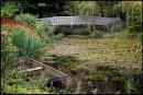 Gooderstone Water Garden, Norfolk by fentiger