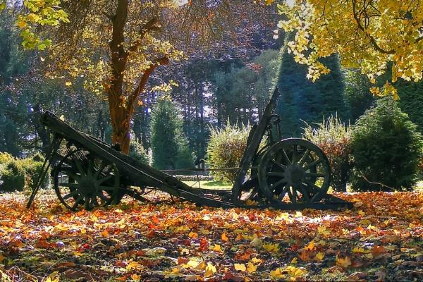 Autumn Morning by ianmoorcroft