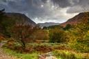 Autumn in Lakeland by Irishkate