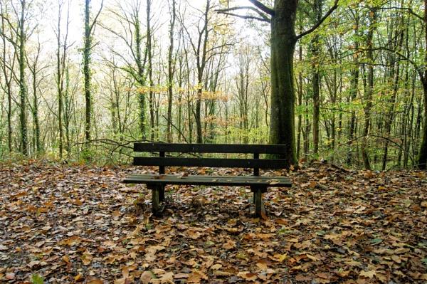 Take a seat. by ast333