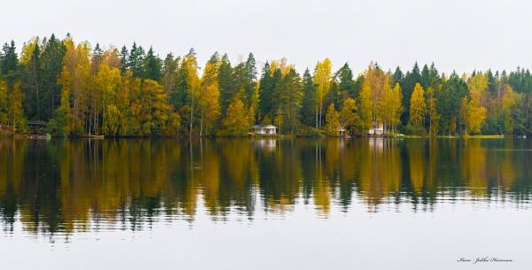 Autumn colors. by kuvailija
