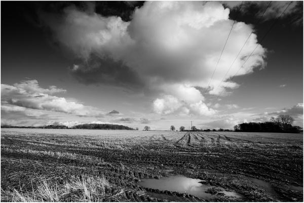 Field by dark_lord