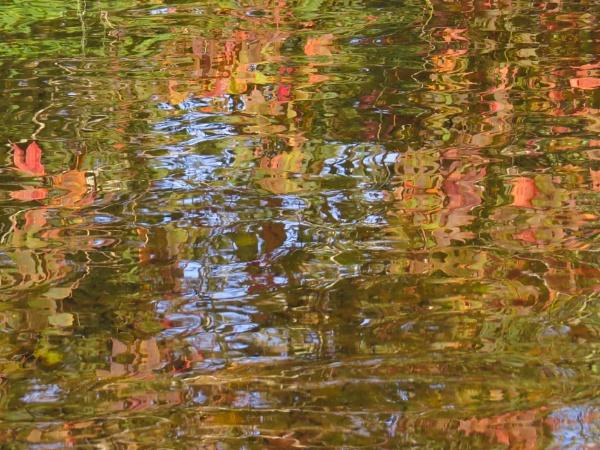AUTUMN REFLECTION by mashwood10