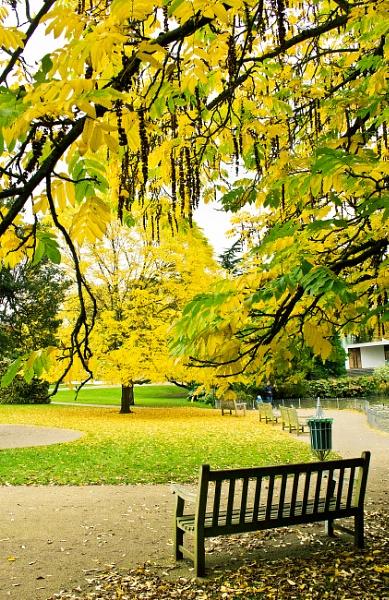 bench by Diyena