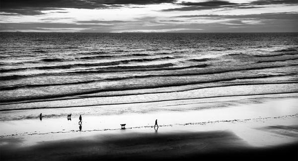 Family Stroll by Trevhas