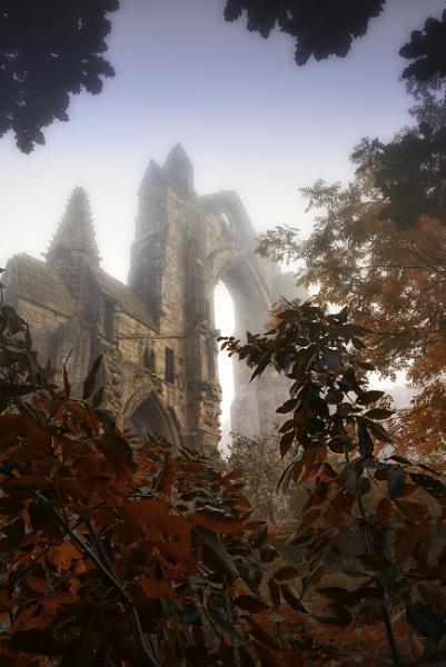 Autumn mist guisborough by Lee100