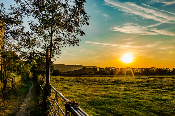 Fields at Amberley (West Sussex) at sunset by Striker52