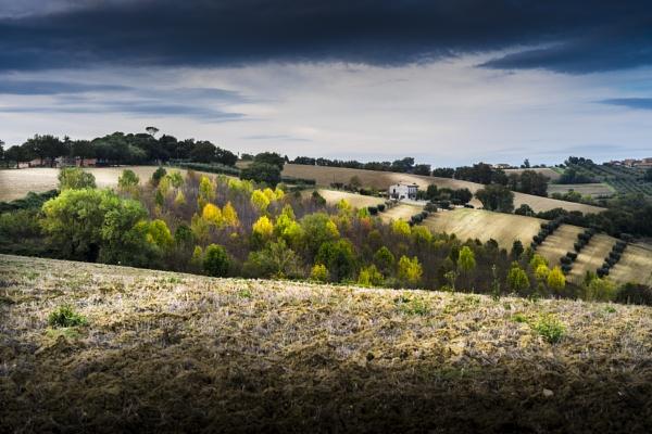 Italian Countryside by fabriziogaluppo