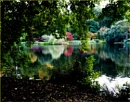 Autumn reflections by Mavis
