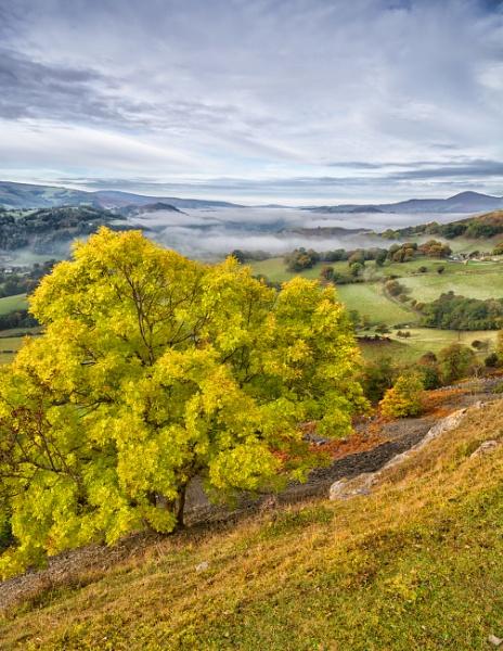 Autumn morning near Llangollen by Brenty