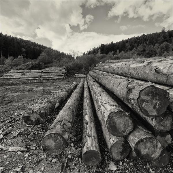 sawmill by pascalg