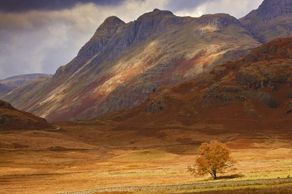 Around blea tarn by john thompson