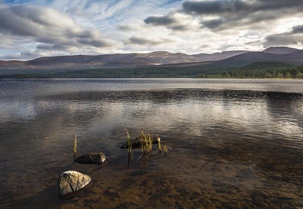 Loch Morlich by Dallachy