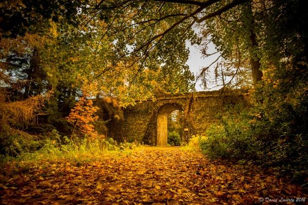 Autumn at Irish Bridge by DavidLaverty