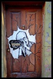 Photographer's door?