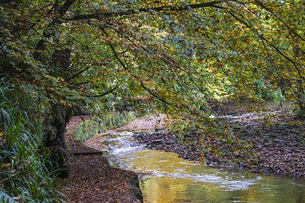 Autumnal by danbrann