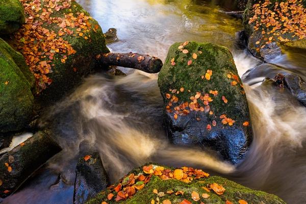 Autumn Falls by javam