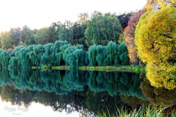 Autumn in the City by sergeysergaj
