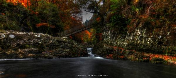Autumnal by alfie99