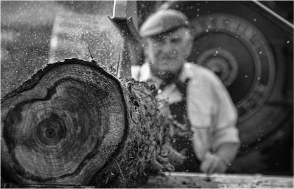 Steam driven wood cutter by malleader