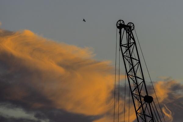 Crane by gerryg