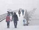 Snow Fun by rontear
