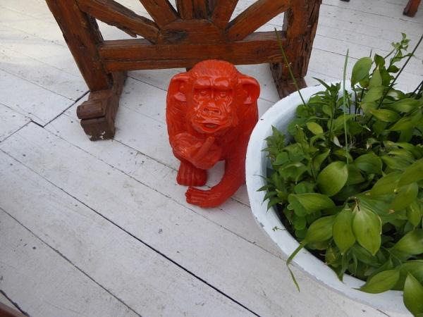A Baboon... by Chinga