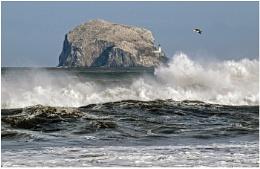 Bass Rock Storm