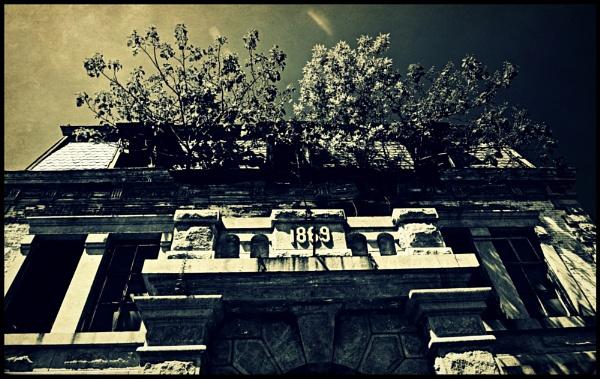 Upstairs garden?? by djh698