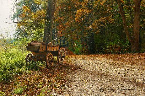 Farm Wagon by colijohn