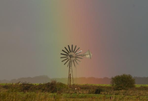 Rainbow by ali63