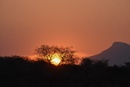 African sunset silhouettes by ColleenA