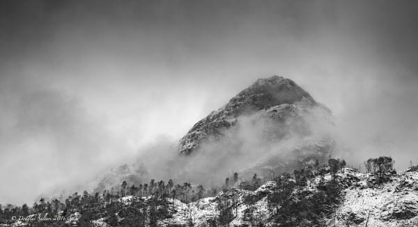 Misty Monochrome... by Scottishlandscapes