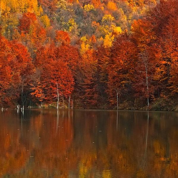 Autumn lake by LaoCe