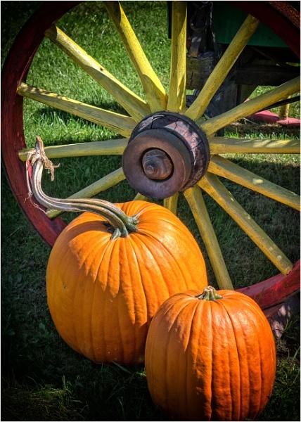Autumn harvest by KingBee