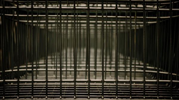 Caged by Craigie10
